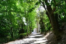 Le Parc de la Fondation Rollin